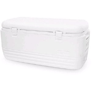 Where to find White Chest Cooler  36x14x14 in St. Petersburg