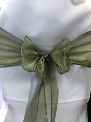 Where to find Sash-Olive Organza  wide in St. Petersburg