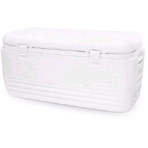 Where to find White Chest Cooler  31x14x10 in St. Petersburg